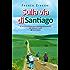Sulla via di Santiago