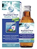 Dr. Niedermaier - RegulatPro Dent Healthy Mouth Mundspülung - 350ml