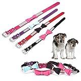 Lushpetz Hundehalsband mit Fliege mit Strass Sparkly Diamante Design by für Kleine und mittlere Hunde (Klein, Türkis und Lila)