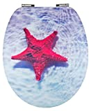 Eisl WC Sitz INDIGO, High Gloss Dekor, mit Absenkautomatik,3D-Motiv, EDINDI01