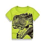 ♔Homebaby♔T-Shirt Garçon Garçons enfants T-shirt Manches Courtes Tops Col rond Cartoon T-Shirt à Manches Courtes - Garçon Fille T-Shirt pour 3 ans Coton T-shirt Dinosaures Impression (Vert, 6 Ans)