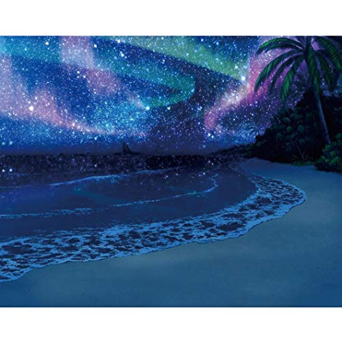 Full Drill Embroidery Paintings - Rhinestone Pasted 5D DIY Diamond Painting Cross Stitch Art Crafts Home Decor Best Gift - Star Sky and Beach (30x25cm)