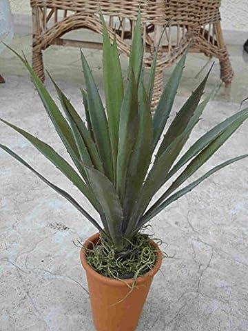 künstliche Kaktee-Stern Succulente 30cm (10)