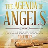 The Agenda of Angels, Volume: 12: The Enemies of Angel Agenda