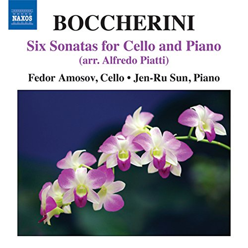 Cello Sonata No. 1 In A Major, G. 13 (Arr. A. Piatti For Cello And Piano): II. Allegro