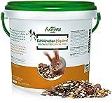 Aniforte, confezione da 1 kg di cibo di qualità per scoiattoli, mangime 100% naturale per scoiattoli, chipmunk e uccelli selvatici