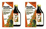 (2 Pack) - Floradix - Floradix Liquid Iron Formula SAL-5707 | 250ml | 2 PACK ...