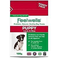 Feel Wells probiótico Puppy Creative Tops (de seguridad para esgrima tamaño: 100 G)