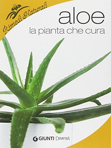 aloe-la-pianta-che-cura-virtu-proprieta-e-applicazioni-terapeutiche