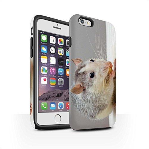 Stuff4® Matte Harten Stoßfest Hülle/Case für Apple iPhone 6 / Hausratte/Ratte Muster/Niedlich Haustiere Kollektion