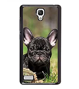 Cute Dog 2D Hard Polycarbonate Designer Back Case Cover for Xiaomi Redmi Note :: Xiaomi Redmi Note 4G