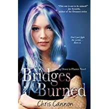 Bridges Burned (Going Down in Flames Book 2)