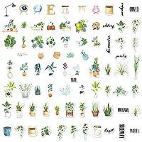ملصقات نباتية لطيفة 80 قطعة، ملصق مخطط جمالي صغير، شارات عصرية لزجاجات المياه، حافظات الهاتف، أجهزة الكمبيوتر المحمول، التقويمات، سجل القصاصات، ألبوم الرصاصات (نمط النباتات)