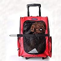 YAJAN-PetTrolleyCase Trolley para Mascotas casa para Mascotas Mochila Espacio Bolsa Asiento Elevador Coche Viaje Coche Asiento portátil Viaje Adecuado para Perros y Gatos