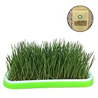 Amakunft Organic Cat Grass Kit with Grid Tray, 200g Wheat Grass Seeds Planter, Natural Hairball Control and Remedy, Grow Wheat Grass for Dog, Cat, Rabbit, Guinea Pig