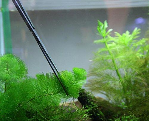 Jane Choi, 3 in 1 Stainless Steel Aquarium Tank Tweezers Scissors Spatula Tool Set for Fish Tank Plants 6