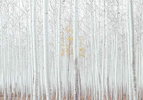 DekoShop AMD12593_VE Papier peint mural en non-tissé Motif forêt, Non-tissé, Weiss, VEL (152,5cm. x 104cm.)