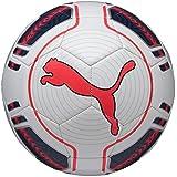 PUMA Fußball EVO Power 6 Trainer MS - Balón de fútbol sala, color blanco, talla 5
