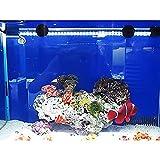 G-Lighting Aquarium LED Beleuchtung Leuchte Lampe 57 LEDs 4W 48CM Lighting für Fisch Tank, EU Stecker Weiß Wasserdicht