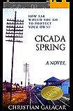 Cicada Spring: A Novel (English Edition)