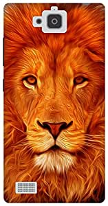 The Racoon Grip Face of the Lion hard plastic printed back case for Huawei Honor 3C