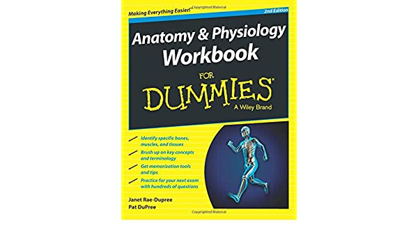 Buy Anatomy and Physiology Workbook For Dummies Book Online at Low ...