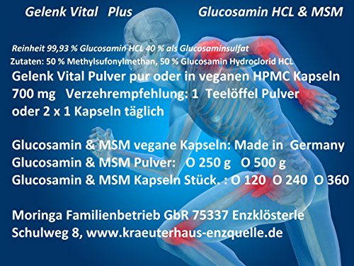 240 Gelenk Vital Plus vegane Kapseln MSM + Glucosamin Hydrochlorid HCL 100% rein Made in Germany