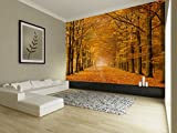 ELL DECOR Nature wall mural, repositionable, no glue required, easy to install wall papers / wall covering