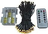 Led Lichterkette Batterie 24 48 96 mit Timer und teilweise mit Fernbedienung grünes Kabel für innen und außen (96er + fernbedienung)