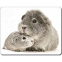 Due d'argento Guinea Pigs Tappetino mouse del computer pad regalo di natale