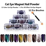Generic 12 color Cat Eye Powder + 1 Pcs Effect Cat Eye Magnet