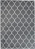 Tapiso Fire Teppich Modern Kurzflor Geometrisch Marokkanisch Gitter Muster Grau Weiss Designer Wohnzimmer ÖKOTEX 80 x 150 cm
