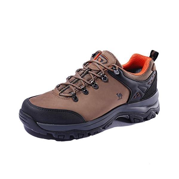0ea5c4de64632 CAMEL CROWN Scarpe da Trekking da Uomo Outdoor Trekking Low-Top  Professionale Antiscivolo Scarpe da Trekking Traspiranti da Esterno per  Sneaker