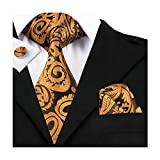 hi-tie Paisley corbata pañuelo gemelos Jacquard tejido de seda corbata Dorado dorado