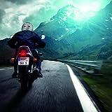 Ultrasport Motorrad-Integralhelm IH-1, Silber, Größe L - 7