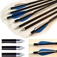 20 Caccia Arrow Hunter Scocche Estrasse Frecce Fibra Di Vetro Bersaglio Pratica Arrow 81.3cm - 20 Frecce