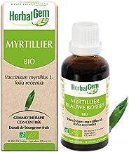 HerbalGem | Myrtillier Bio| Macérats-Mères de Gemmothérapie Concentrée | 30 ml