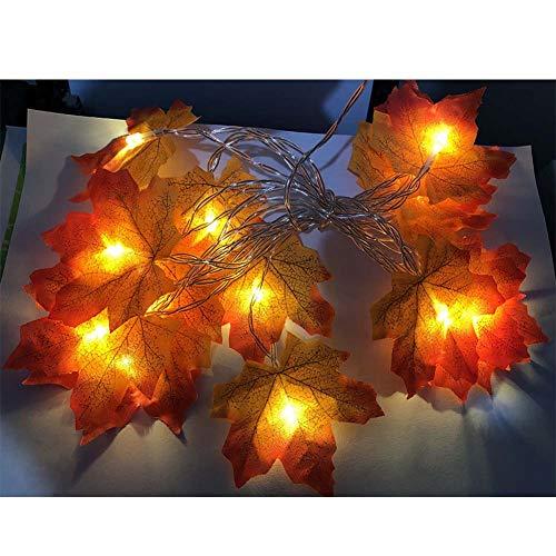 NZNDONE Linterna decoración jardín Día acción