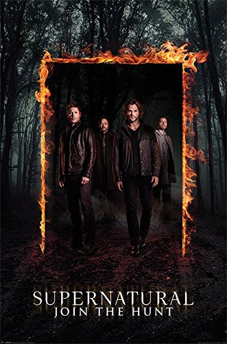 Preisvergleich Produktbild Supernatural Burning Gate Poster Mehrfarbig