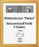 Farina Barock Bilderrahmen 70 x 110 cm Farbe und Verglasung wählbar 110 x 70 cm Hier: Gold schlicht mit Acrylglas Antireflex 2 mm