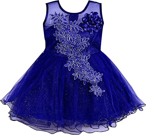 Wish Karo Baby Girls Blue Color Net Partywear Frock Dress - (fe1051blu6-12 Months)