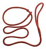 DOGS and MORE - PatchArt-Leine (Rot) - Leine und Halsband in EINEM; Retrieverleine in sieben Farben