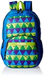 American Tourister 27 Ltrs Blue Casual Backpack (Hashtag 01)
