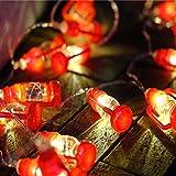 FeiliandaJJ Lichterkette, String Lights 220V 1/2M 10/20pc Kreativ Mini Laterne Weihnachtsbaum Hängende Verzierung LED Licht Innen/Außen Hochzeit Party Halloween Christmas Haus Deko (Rot, 2M(20pcs))