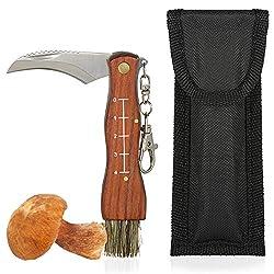 Oramics Pilzmesser braun, Naturfarben mit Bürste und Lineal, Holzgriff Edelstahl Klinge, Champignon/Trüffel Taschenmesser Inklusive Tasche