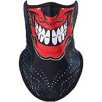AHELMET Pasamontañas Máscara de esquí Clima frío Máscara Facial Motocicleta Cuello Calentador Capucha Última Personalidad cómoda A Prueba de Viento (Color : Picture1)