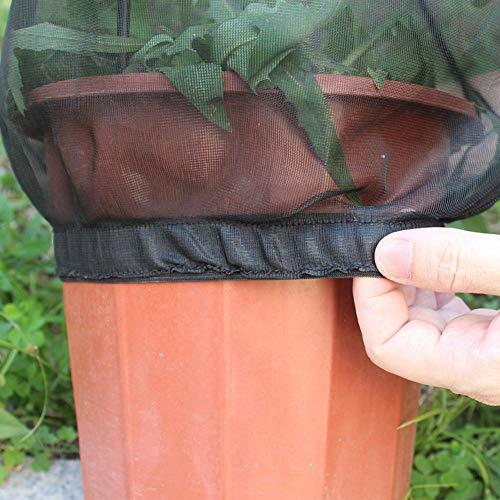 Schmetterling Lebensraum Zusammenklappbare Bug Catcher Net Mesh Insekten Pflanze Käfig Terrarium Für Kinder/Nett/Kleinkind Fangen Grillen/Leuchtkäfer Etc Appealing ()