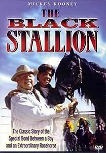 Black Stallion [DVD] [Region 1] [US Import] [NTSC]