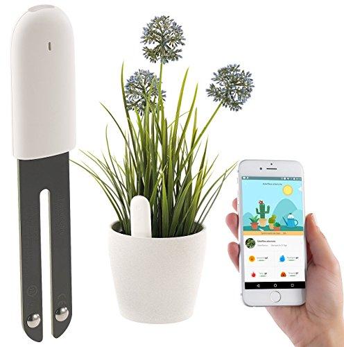 Royal Gardineer Zubehör zu Pflanzen-Sensor: 4in1-Pflanzensensor m. Bluetooth, App-Kontrolle, 1 Jahr Laufzeit, IPX5 (Pflanzensensor kabellos)