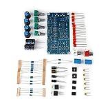 Zunate HiFi-Verstärker Board,AMP Vorverstärker DIY Röhrenverstärker Vorverstärker AMP Vorverstärker Bord Kopfhörer Puffer DIY Kit,breiter Frequenzband,Kleine Rauschen